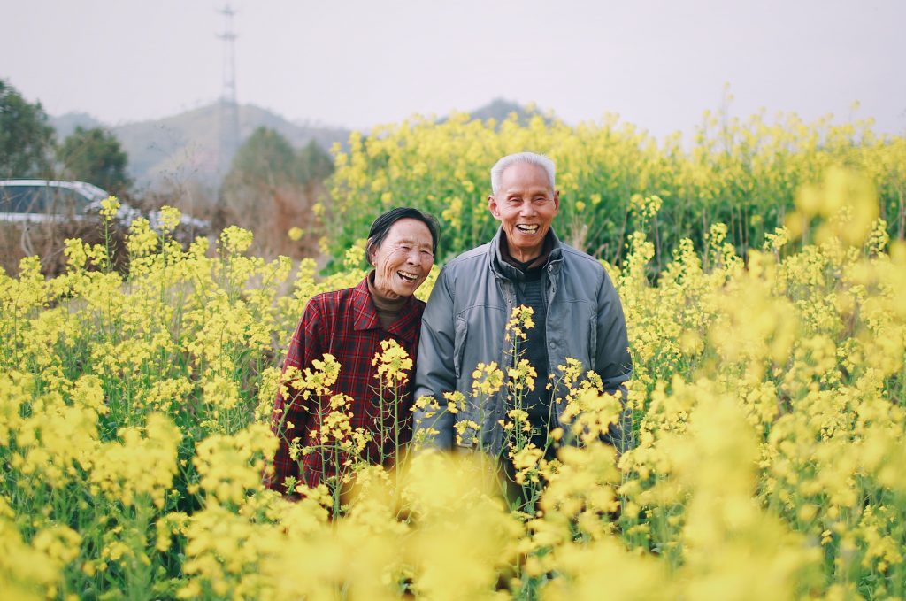older couple couple standing in a field of yellow blooms