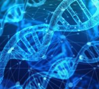 DNA Testing For Health And Ancestry